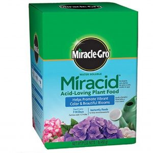 Scotts Miracid Acid Loving Plant Food
