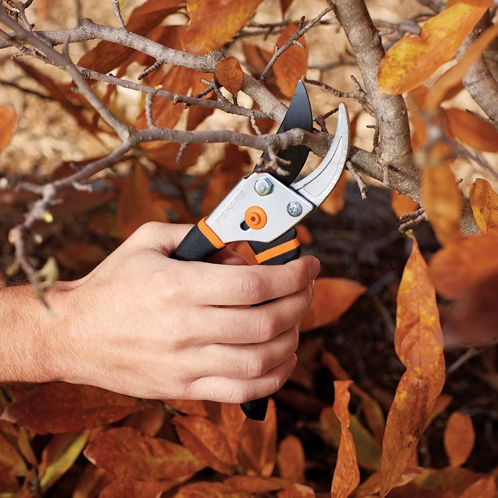 best garden clippers