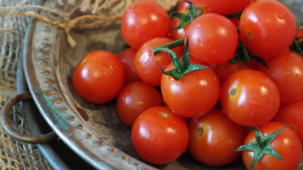 How to start tomato seeds indoors